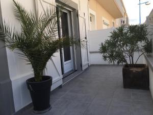 Appartement Au Grau Du Roi, Appartamenti  Le Grau-du-Roi - big - 12