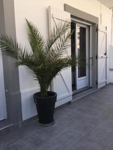 Appartement Au Grau Du Roi, Appartamenti  Le Grau-du-Roi - big - 38