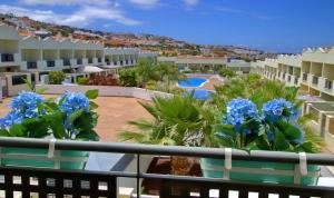 Oasis Fañabe III, Apartments  Adeje - big - 1