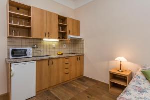 Aparthotel Lublanka, Hotely  Praha - big - 2