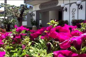 Hotel Ristorante Donato, Hotely  Calvizzano - big - 49