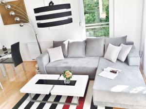 Sunny Hill Apartment