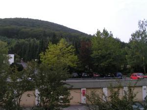 Ferienwohnung Foppe, Apartmanok  Bad Harzburg - big - 19