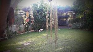 Holiday Home Raz, Apartments  Kefar Sava - big - 14