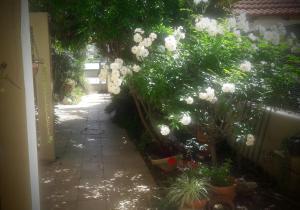 Holiday Home Raz, Apartments  Kefar Sava - big - 17