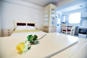 Airport Residence, Apartmány  Otopeni - big - 118