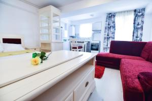 Airport Residence, Apartmány  Otopeni - big - 78