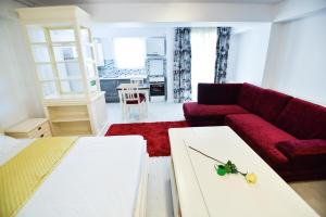Airport Residence, Apartmány  Otopeni - big - 67
