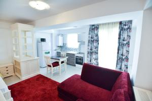Airport Residence, Apartmány  Otopeni - big - 63