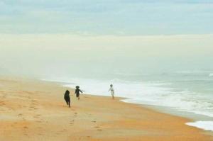 Pirate's Paradise, Prázdninové domy  Vilano Beach - big - 28