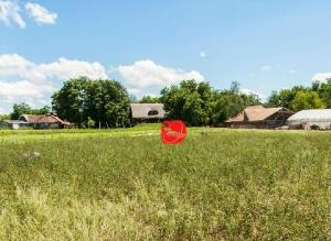 Farm stay Orlov put, Farmy  Bilje - big - 42