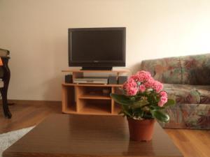 Visoko City Apartment, Apartments  Visoko - big - 13