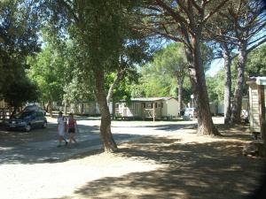 Bungalow Vacances - Riviera Vacances, Kempingy  Fréjus - big - 13