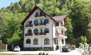 Vila A&N, Гостевые дома  Брашов - big - 1