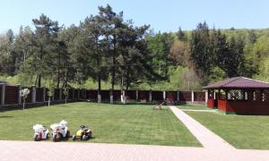 Vila A&N, Гостевые дома  Брашов - big - 35