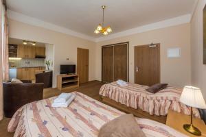 Aparthotel Lublanka, Hotely  Praha - big - 90