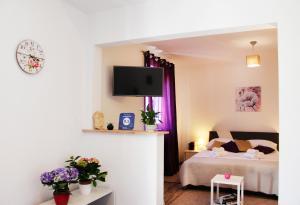 Apartments Lavel