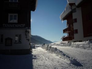 Tannenhof, Oberwald, Szállodák  Oberwald - big - 14