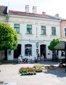 Penzion Villa Regia, Hostince  Košice - big - 16