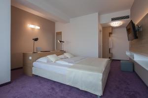 City Park Hotel, Hotely  Skopje - big - 6