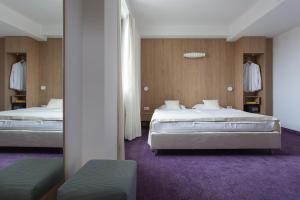 City Park Hotel, Hotely  Skopje - big - 9