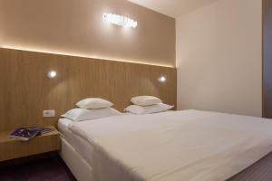 City Park Hotel, Hotely  Skopje - big - 15