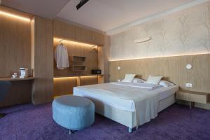 City Park Hotel, Hotely  Skopje - big - 21