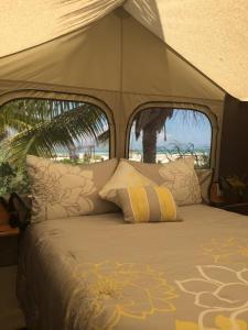 Rhincodon Typus, Hotel  Isola Holbox - big - 4