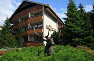 obrázek - Kur- und Gesundheitshotel Zum Goldenen Hirsch