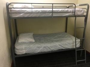 obrázek - Treasure State Hostel