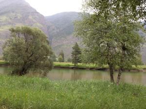 Гостевой дом Дом на озере - фото 13