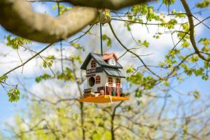 Гостевой дом Тригорская 1 - фото 25