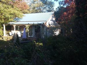 Bumblebee Cottage, Priváty  Greytown - big - 34