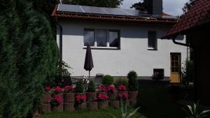 Ferienhaus Harzidyll