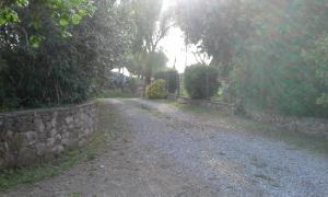 La Palma, Farm stays  Magliano in Toscana - big - 29