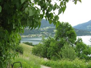 Seeappartment Elisabeth - Apartment - Rothenthurn