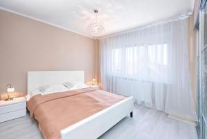 Vicori Ultracentral Apartment, Apartments  Timişoara - big - 8