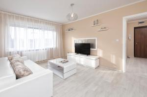 Vicori Ultracentral Apartment, Apartments  Timişoara - big - 6