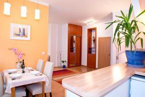 Apartmány SKLEP, Apartments  Prague - big - 12