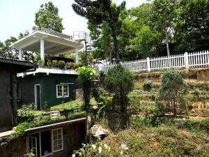 Shades of Green Homestay