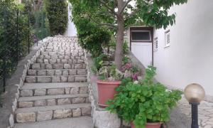 Guest House Lucija