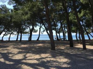 Delux Apartment Beach, Ferienwohnungen  Makarska - big - 3