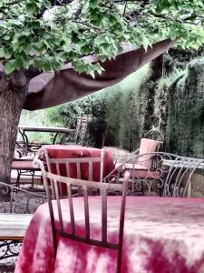 Aux Amandiers, Bed and Breakfasts  Fréjus - big - 12