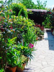 Aux Amandiers, Bed and Breakfasts  Fréjus - big - 16