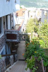Apartman Studio Nedović