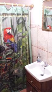 Flor de Mayo Airport Nature Reserve, Guest houses  Alajuela - big - 13