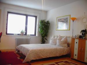 Rhein Apartment