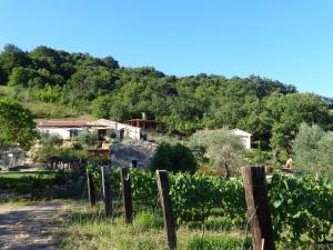Agriturismo Fontenuova