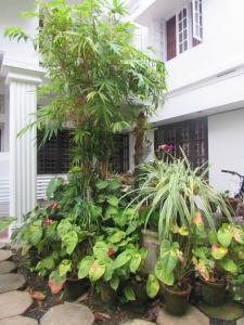 Bay Mansion Homestay, Alloggi in famiglia  Cochin - big - 13