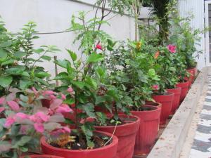 Bay Mansion Homestay, Alloggi in famiglia  Cochin - big - 11